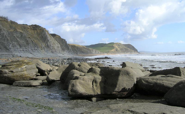 Jurassic rocks at the Dorset coast. © Hannah Townley, NE